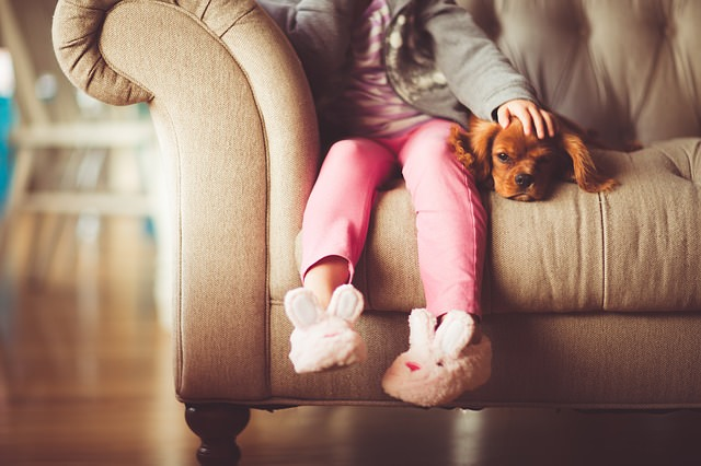 child and dog sat on sofa